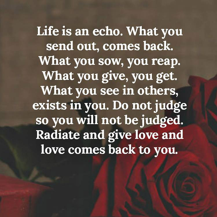Awesome LIFE IS AN ECHO