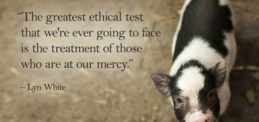 The greatest ethical test