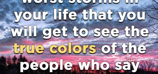 it is during the worst storms in your life that you will get to see the true colors of the people who say they are about you