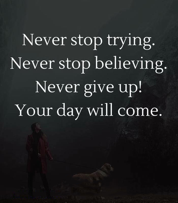 Trying Quotes | Never Stop Trying Quotes Area