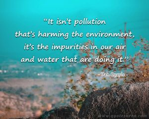 """""""It Isn't The Pollution That's Harming The Environment. It's The Impurities In The Air And Water That Are Doing It."""""""