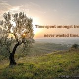 Time spent amongst trees is never wasted time